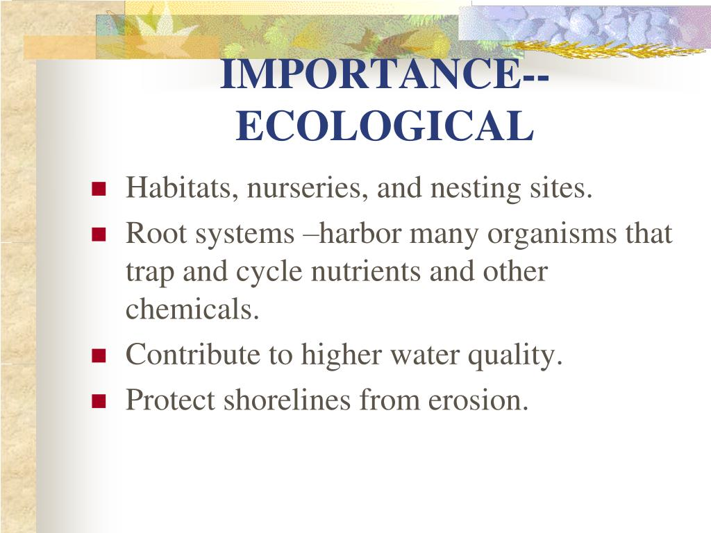 IMPORTANCE--ECOLOGICAL