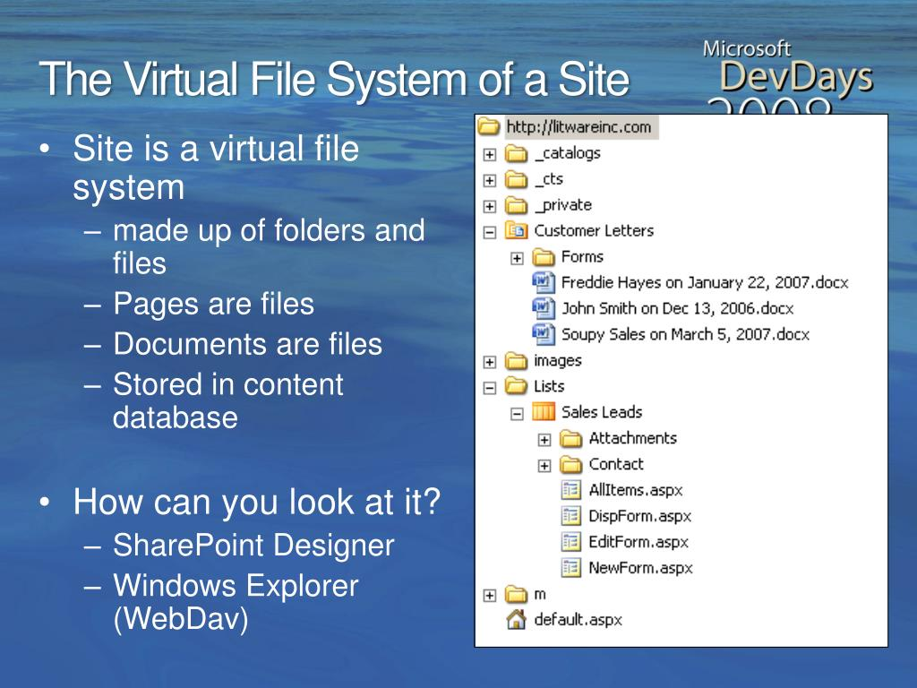 The Virtual File System of a Site