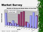 market survey14