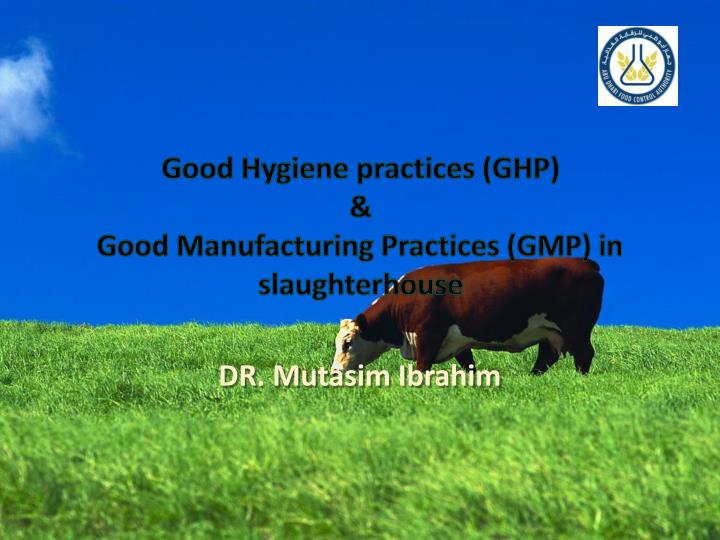 good hygiene practices ghp good manufacturing practices gmp in slaughterhouse n.