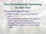 tree establishment sustaining the new tree1