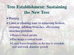 tree establishment sustaining the new tree6
