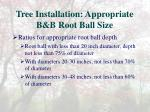 tree installation appropriate b b root ball size