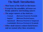the skull introduction1