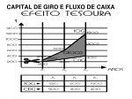 capital de giro e fluxo de caixa24