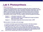 lab 4 photosynthesis8