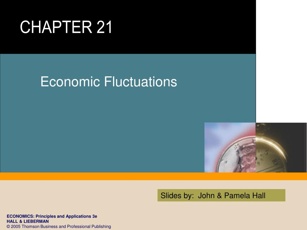 economic fluctuations l.