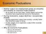 economic fluctuations2
