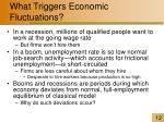 what triggers economic fluctuations