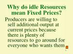 why do idle resources mean fixed prices