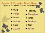 regular irregular plural nouns what is the plural form of each noun