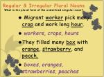 regular irregular plural nouns what is the plural form of the underlined singular noun