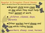 regular irregular plural nouns what is the plural form of the underlined singular noun39