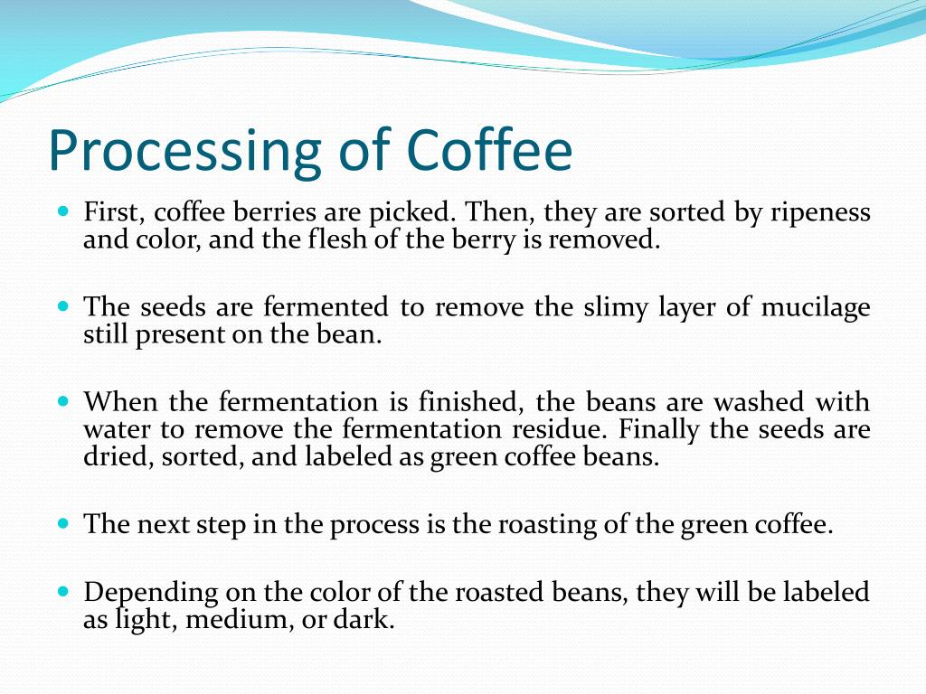 Processing of Coffee