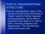 puko a organizational structure