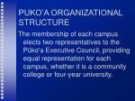 puko a organizational structure25