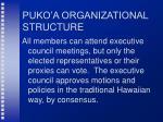 puko a organizational structure26