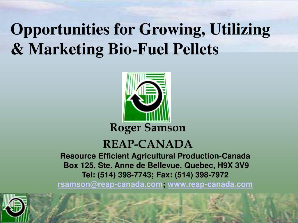 opportunities for growing utilizing marketing bio fuel pellets l.