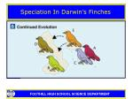 speciation in darwin s finches24