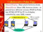 collaborative palm tops