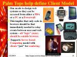 palm tops help define client model