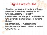 digital forestry grid1