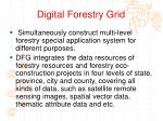digital forestry grid3