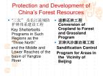 protection and development of china s forest resources3