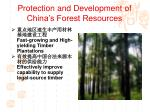 protection and development of china s forest resources5