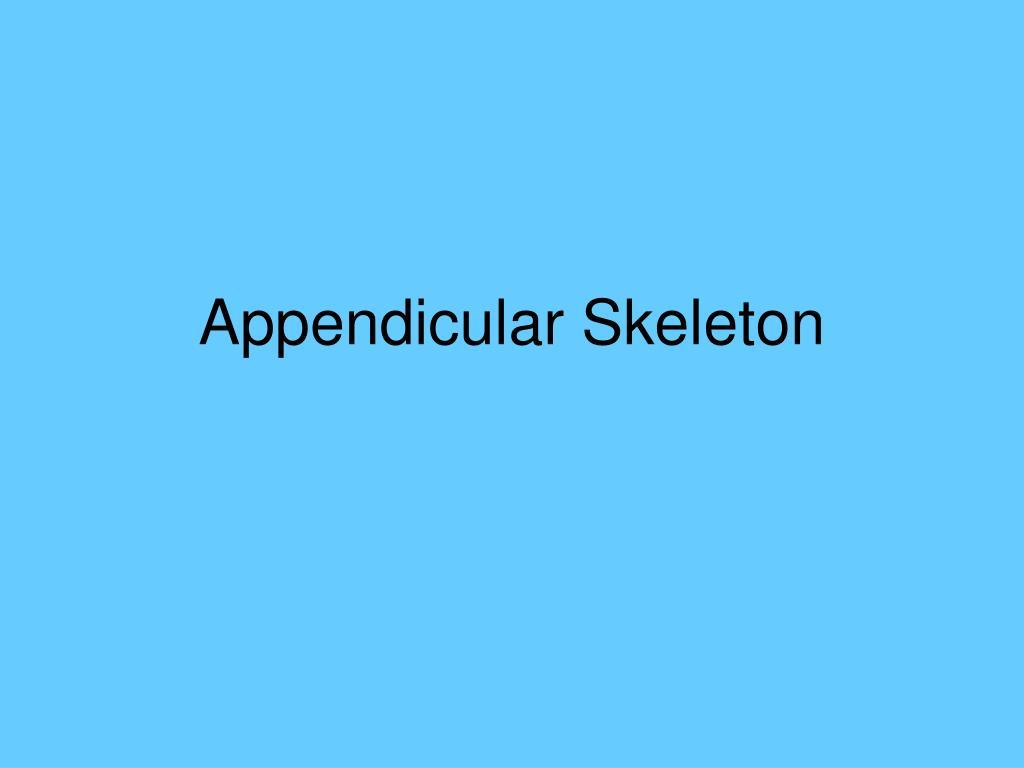 appendicular skeleton l.
