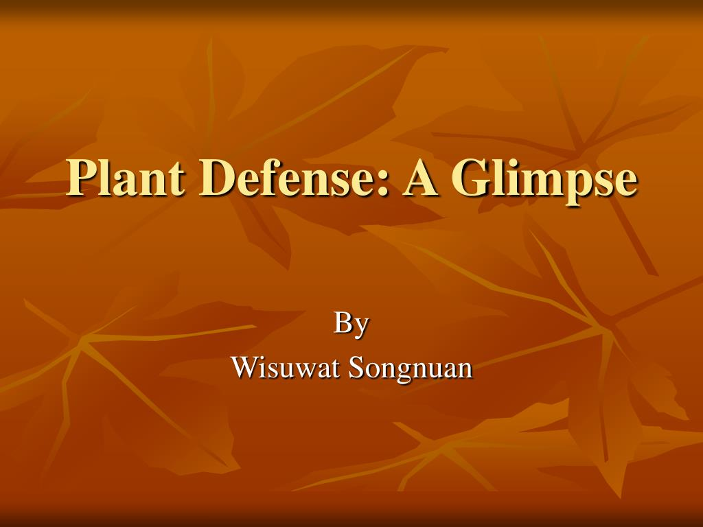 plant defense a glimpse l.