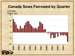 canada sows farrowed by quarter