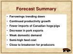 forecast summary