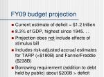 fy09 budget projection