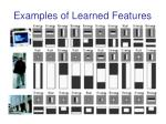 examples of learned features