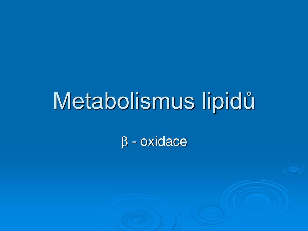 metabolismus lipid l.