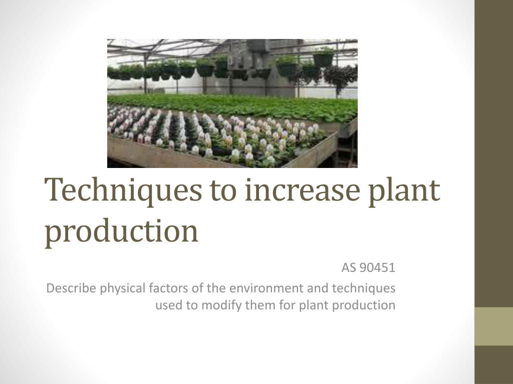 techniques to increase plant production l.