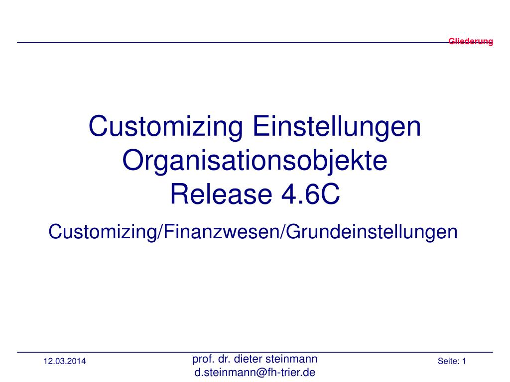 customizing einstellungen organisationsobjekte release 4 6c l.
