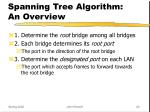 spanning tree algorithm an overview