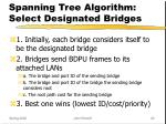 spanning tree algorithm select designated bridges