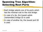 spanning tree algorithm selecting root ports