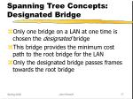spanning tree concepts designated bridge