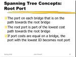 spanning tree concepts root port