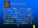a dog s story