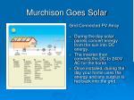 murchison goes solar3