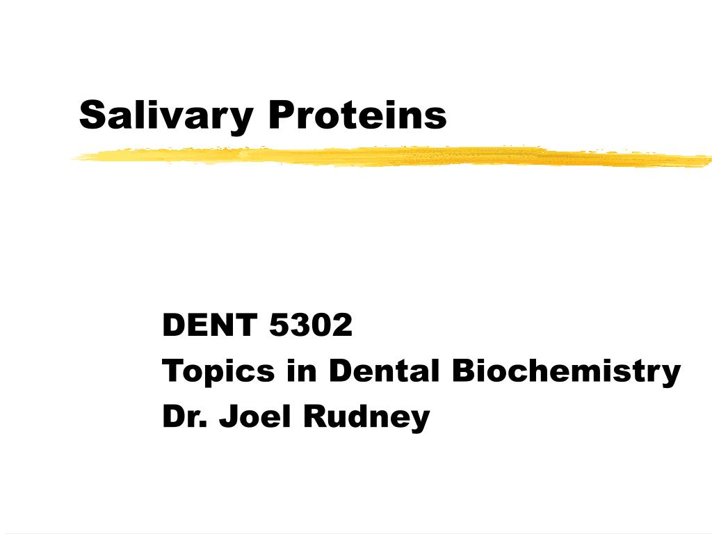 salivary proteins l.