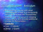 2 nd compartment reticulum