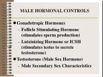 male hormonal controls