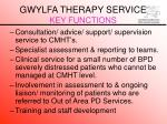 gwylfa therapy service key functions