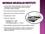 michigan molecular institute